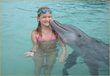 dolphin-encounter.jpg