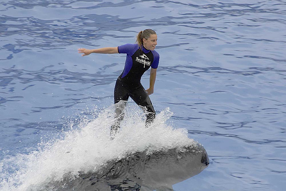 0967_ride-the-whales.jpg