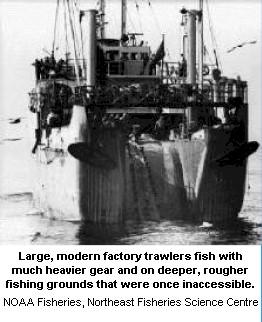 factory_trawler.jpg